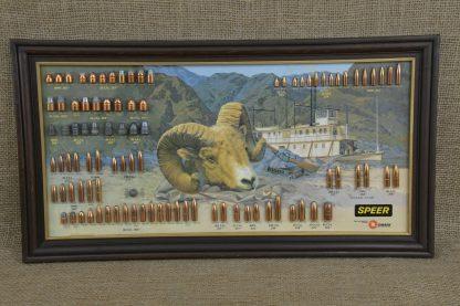 Bighorn Ram Speer Bullet Board